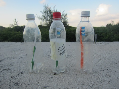 Toothbrushes in a bottle 2