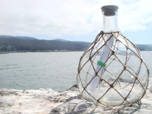 mel-stanley-in-bottle-lijygimgur